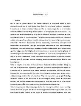 Modulprøve i PL4 om tosprogede elever