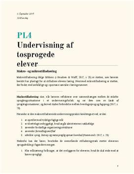 Makro- og mikrostilladsering i PL4